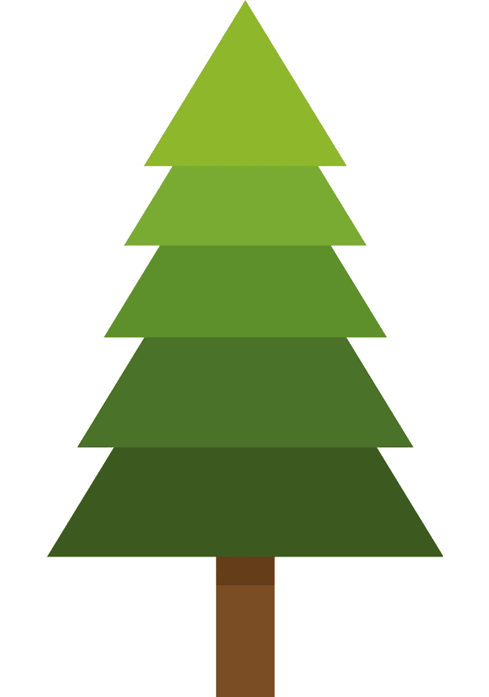 Pine Tree clipart 8
