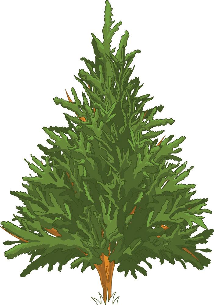 Pine Tree clipart free