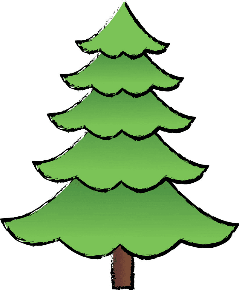 Pine Tree clipart png 1