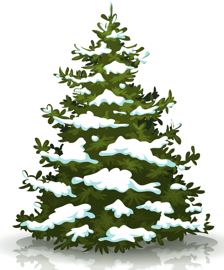 Pine Tree clipart png 2