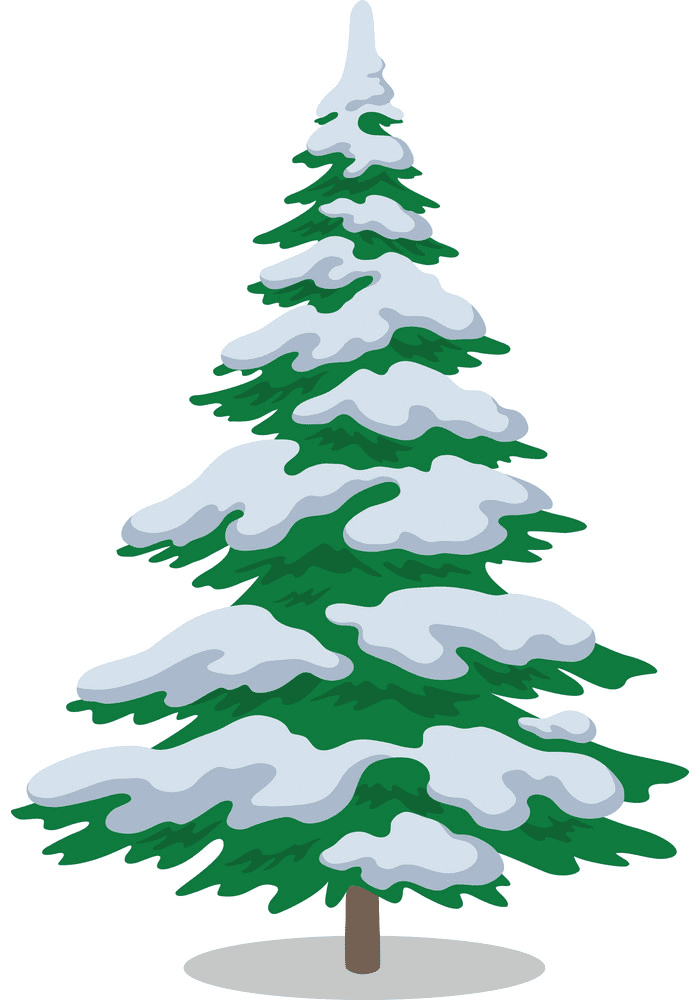 Pine Tree clipart png 3