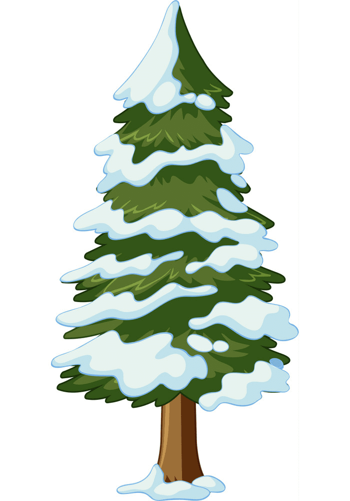 Pine Tree clipart png 4