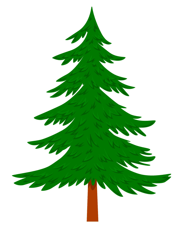 Pine Tree clipart png image