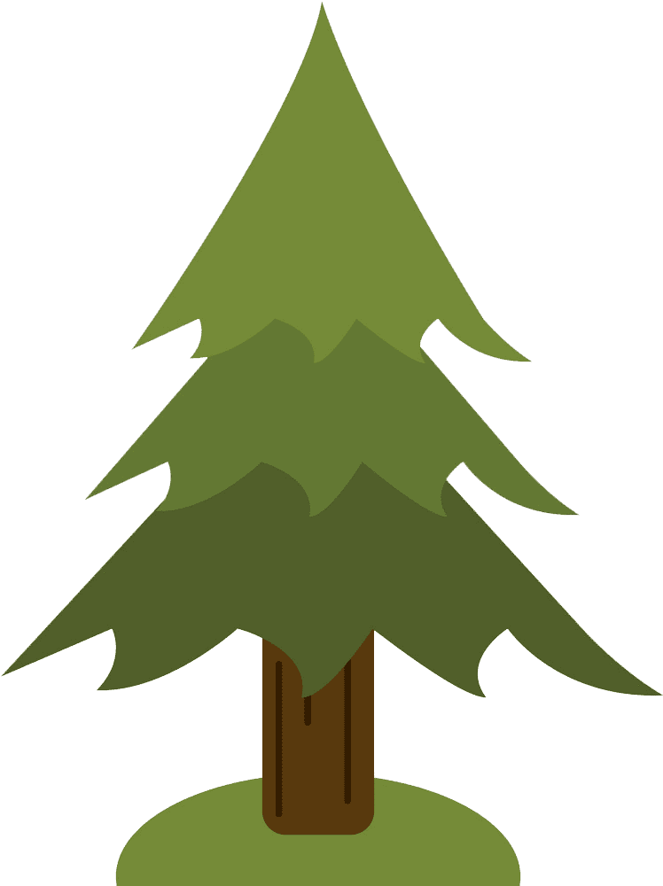 Pine Tree clipart transparent 1