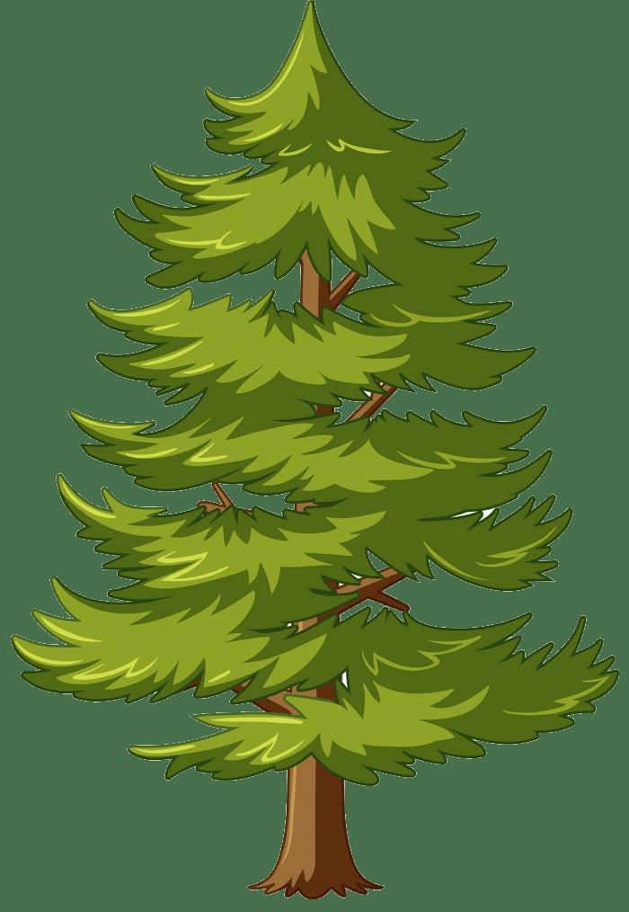Pine Tree clipart transparent 2