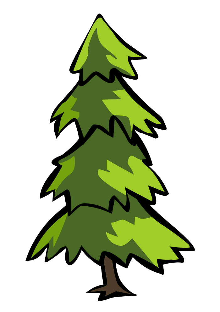 Pine Tree clipart transparent background 1