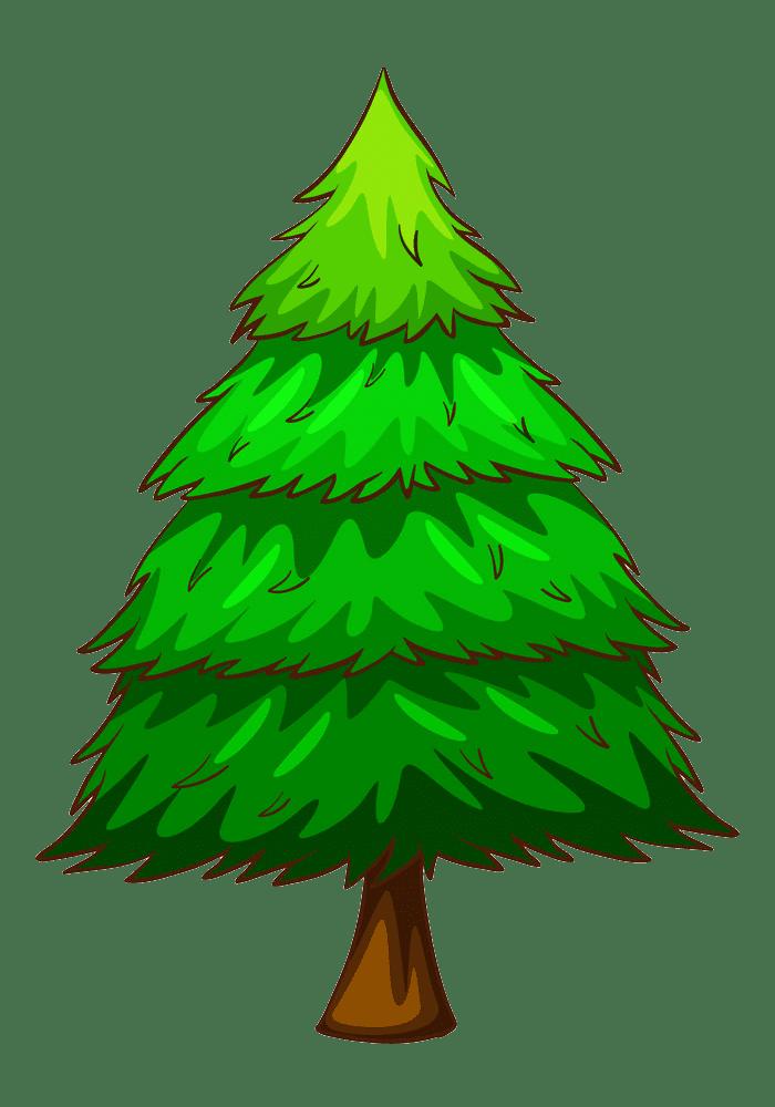 Pine Tree clipart transparent background 3