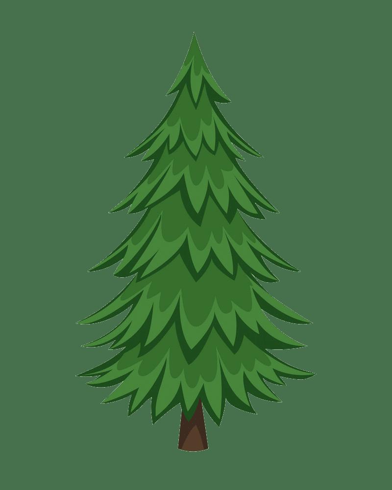 Pine Tree clipart transparent background 4