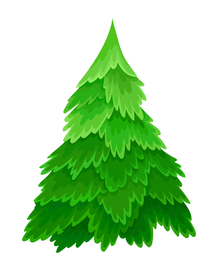 Pine Tree clipart transparent background