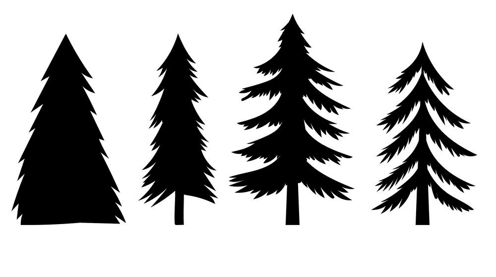 Pine Trees Silhouette image