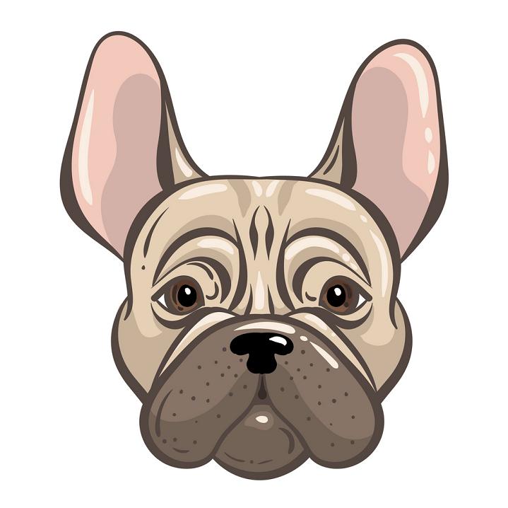 Bulldog Face clipart free image