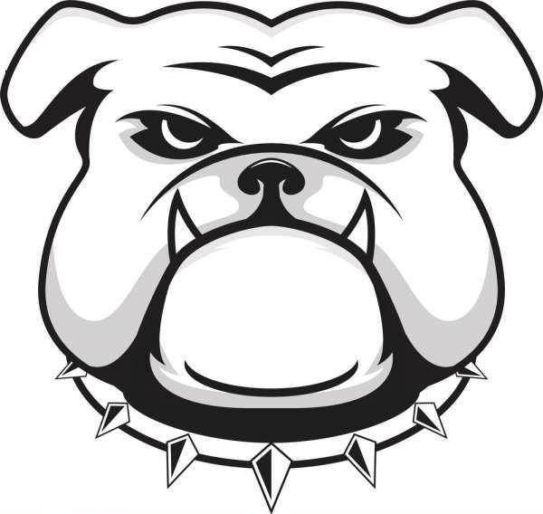 Bulldog Face clipart png