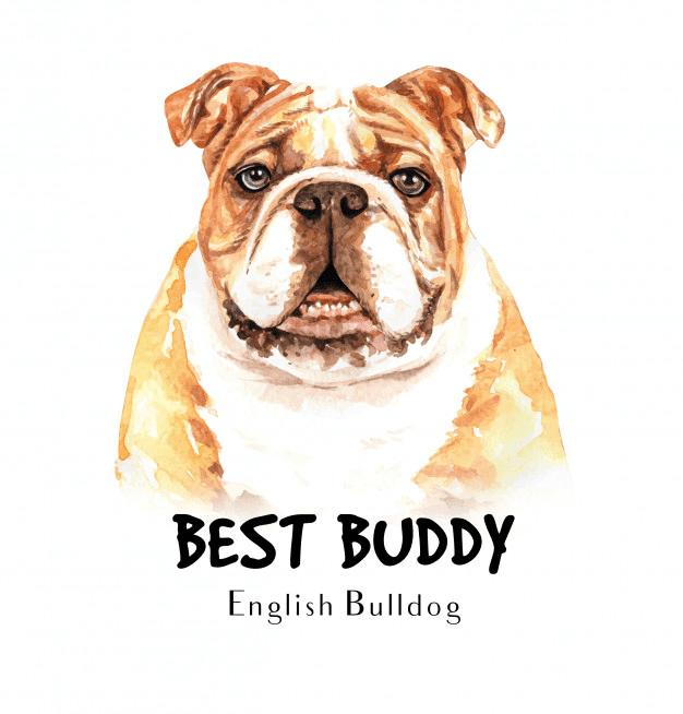 Bulldog clipart free clip art
