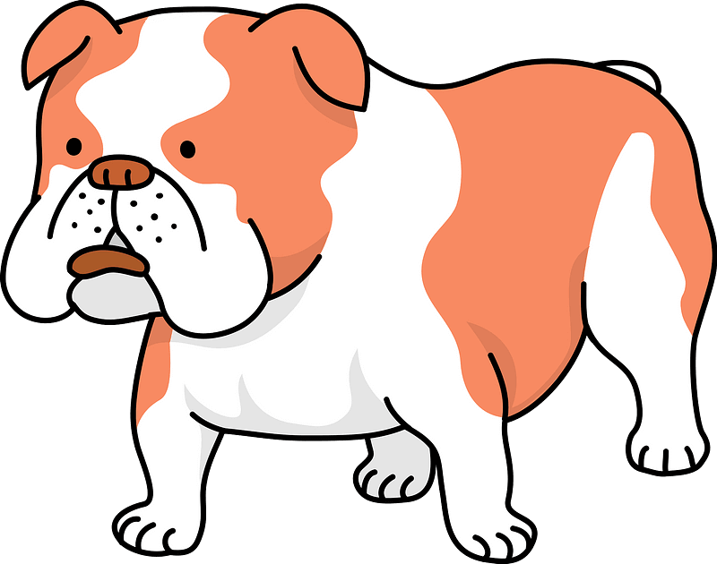 Bulldog clipart transparent png image