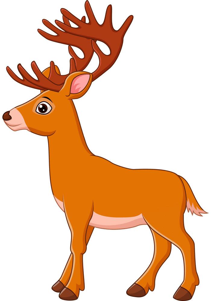 Cartoon Deer clipart