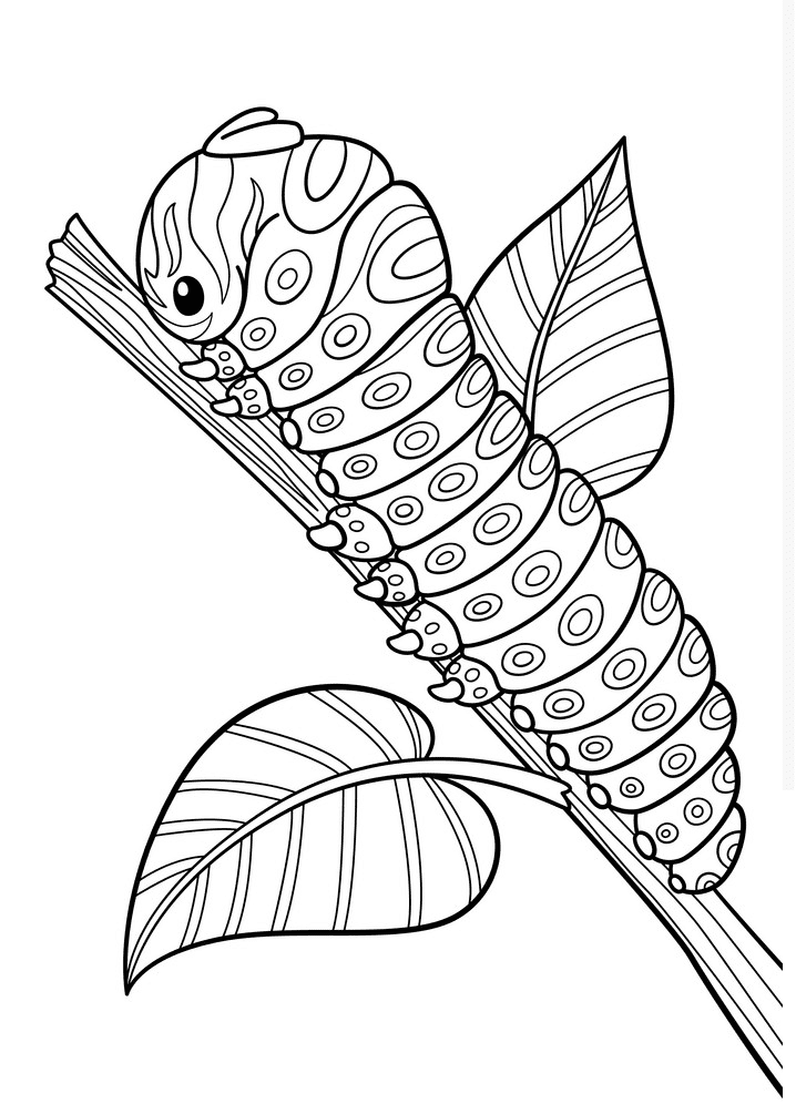 Caterpillar Clipart Black and White png image