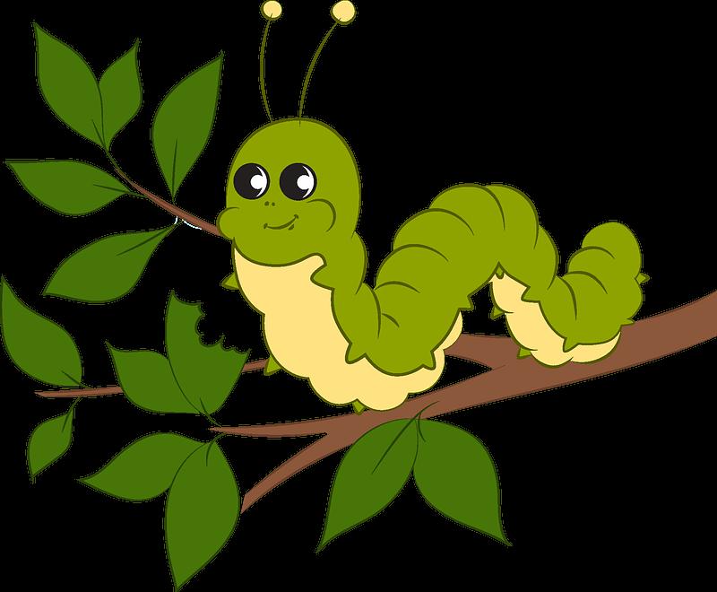 Caterpillar clipart transparent background 2