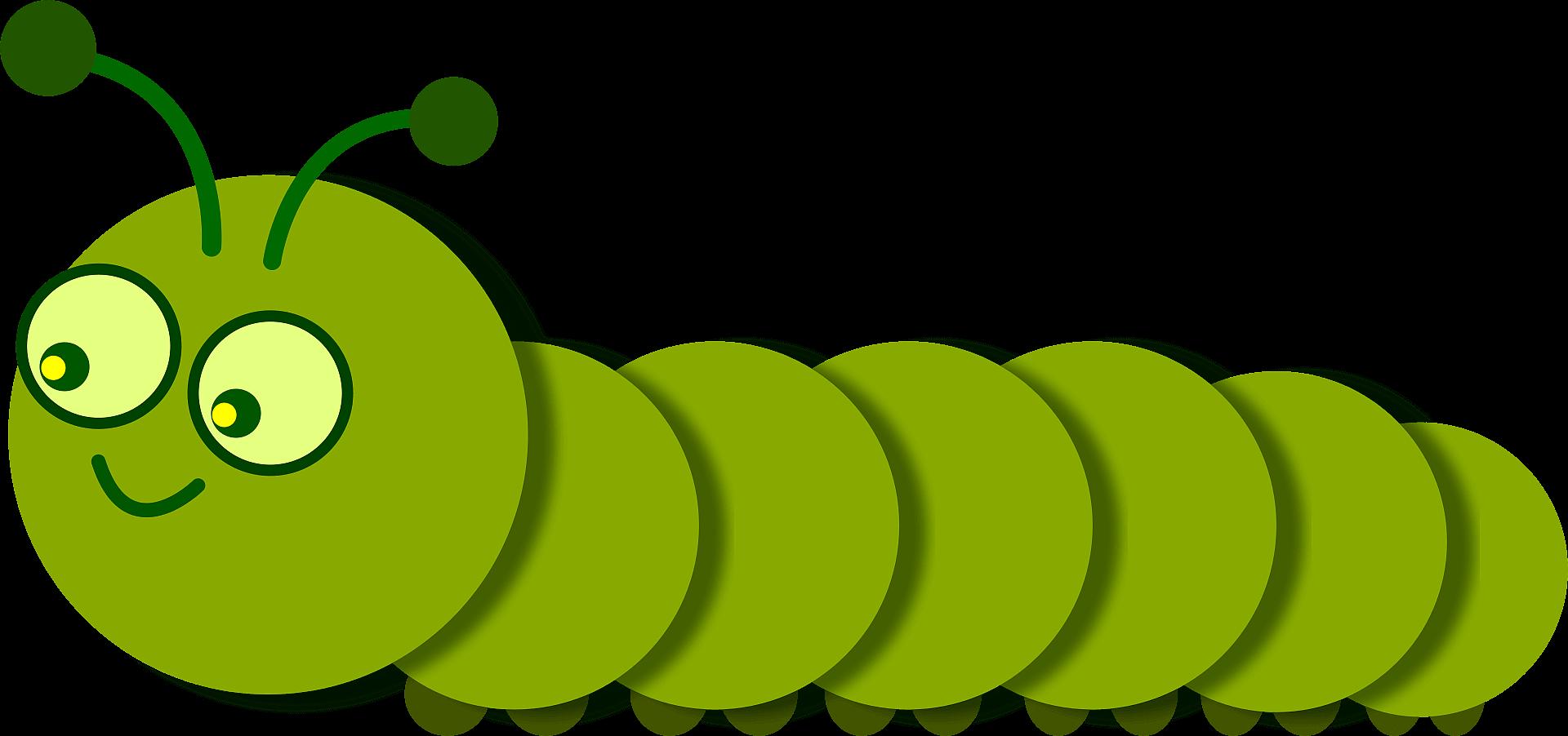 Caterpillar clipart transparent background 6