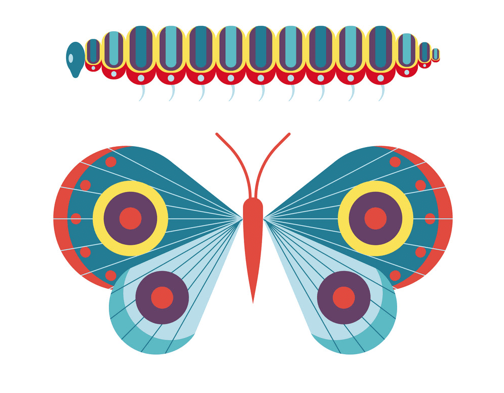 Caterpillar to Butterfly clipart png free