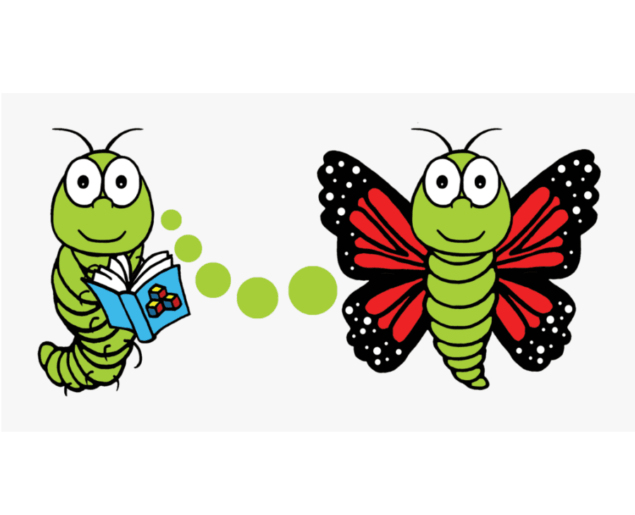 Caterpillar to Butterfly clipart png