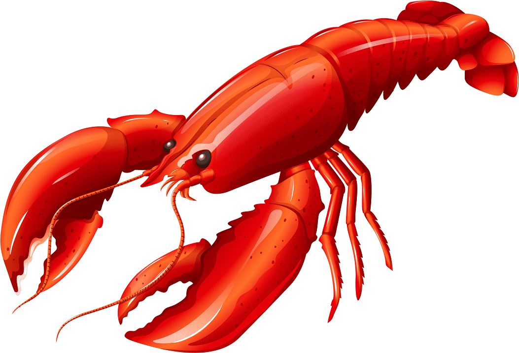 Clipart Lobster free