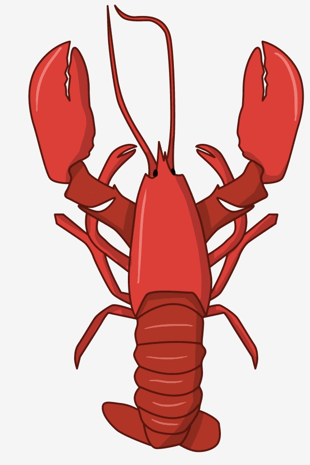 Clipart Lobster image