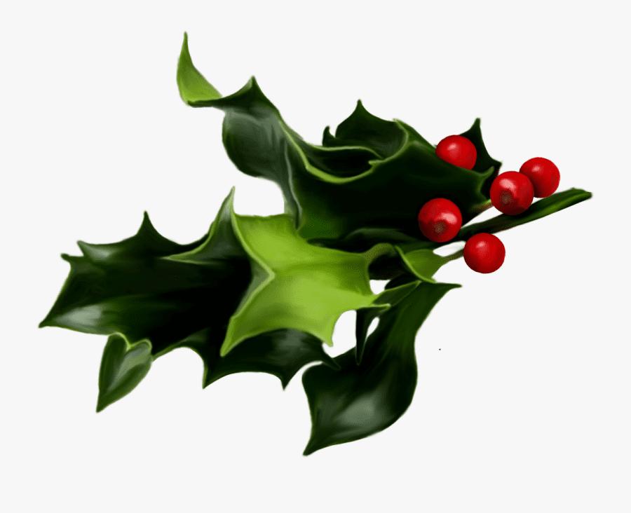 Clipart Mistletoe 5