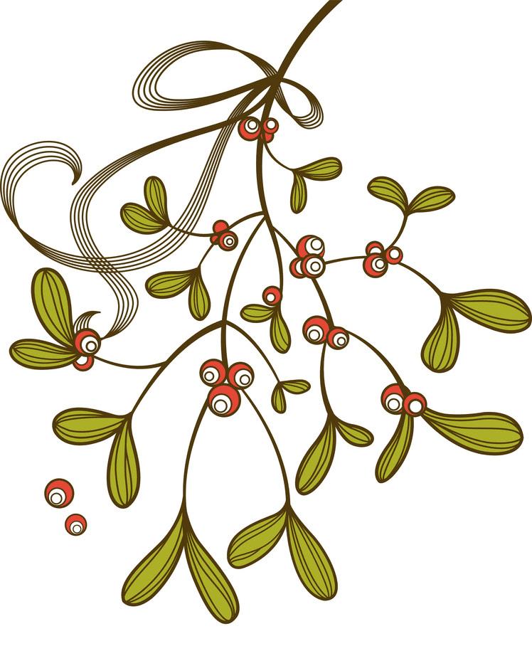 Clipart Mistletoe for free