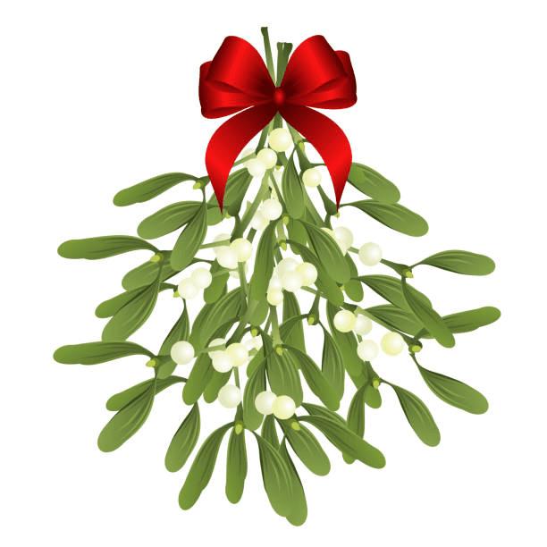 Clipart Mistletoe free images