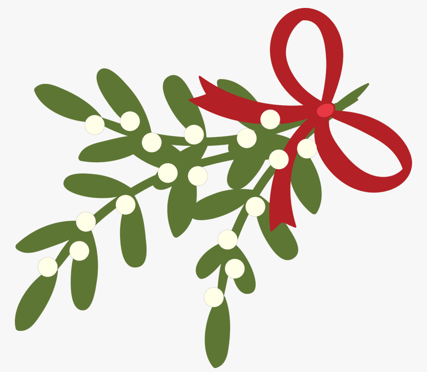 Clipart Mistletoe png image