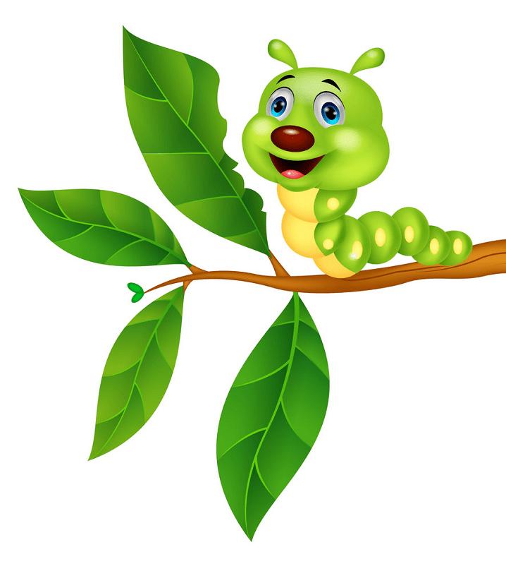 Cute Caterpillar clipart 2