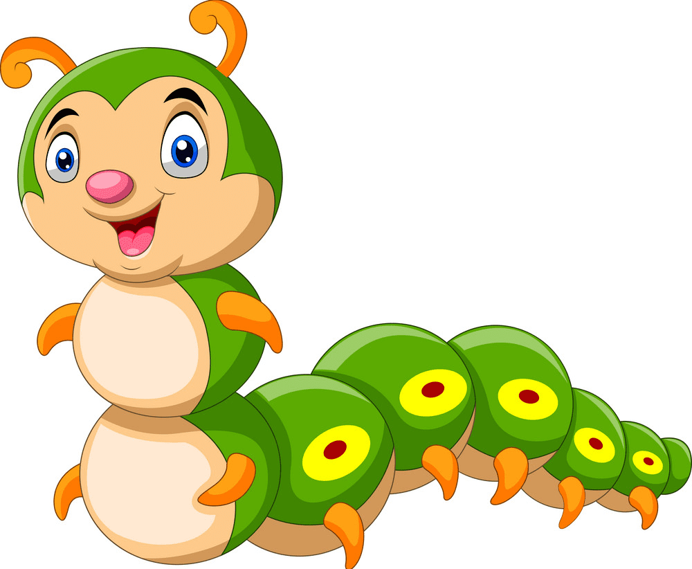 Cute Caterpillar clipart png images
