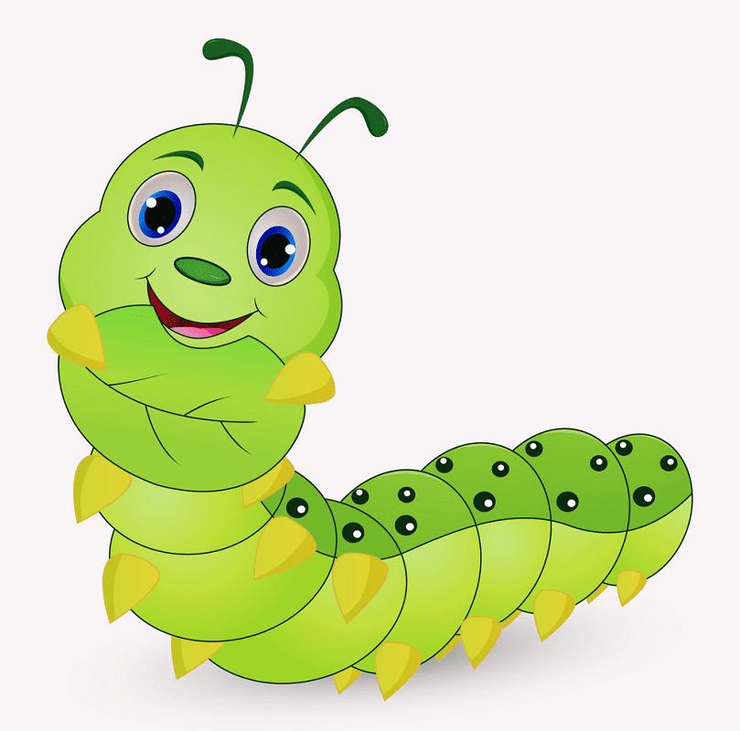 Cute Caterpillar clipart png