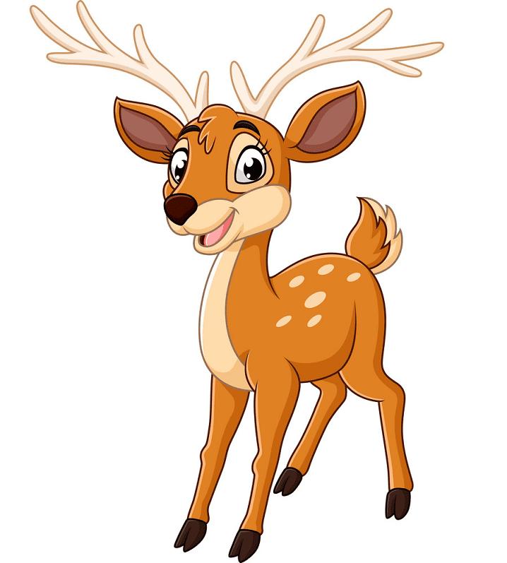 Cute Deer clipart png