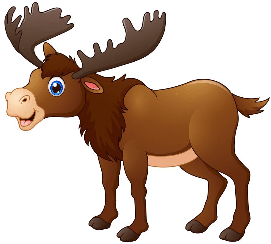 Cute Moose clipart png