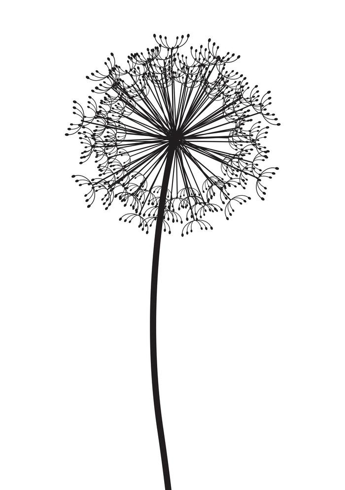 Dandelion Clipart Black and White 4