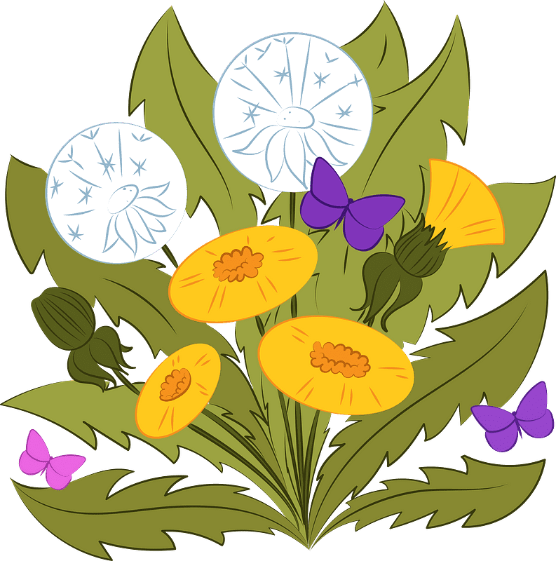 Dandelion clipart transparent 7