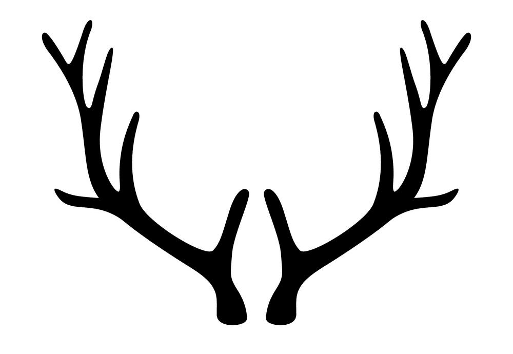 Deer Antlers clipart free image