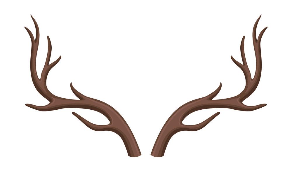 Deer Antlers clipart image