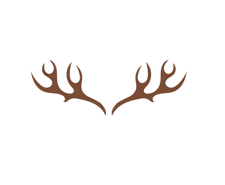 Deer Antlers clipart png image