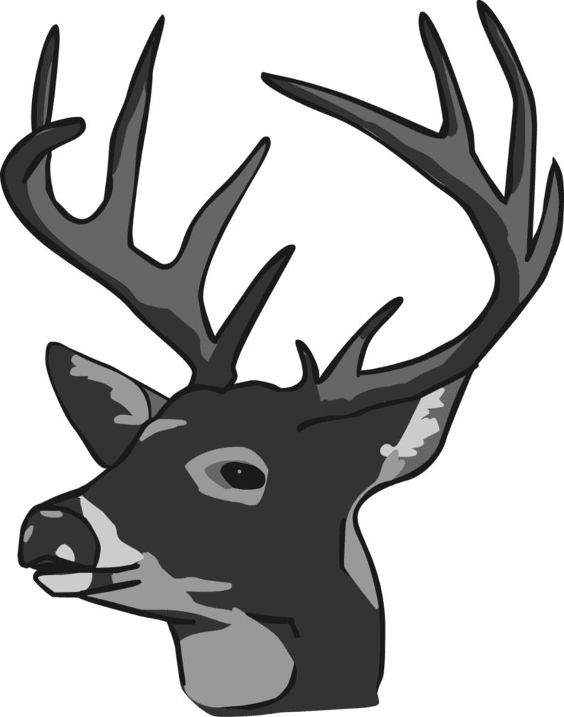 Deer Head clipart free image