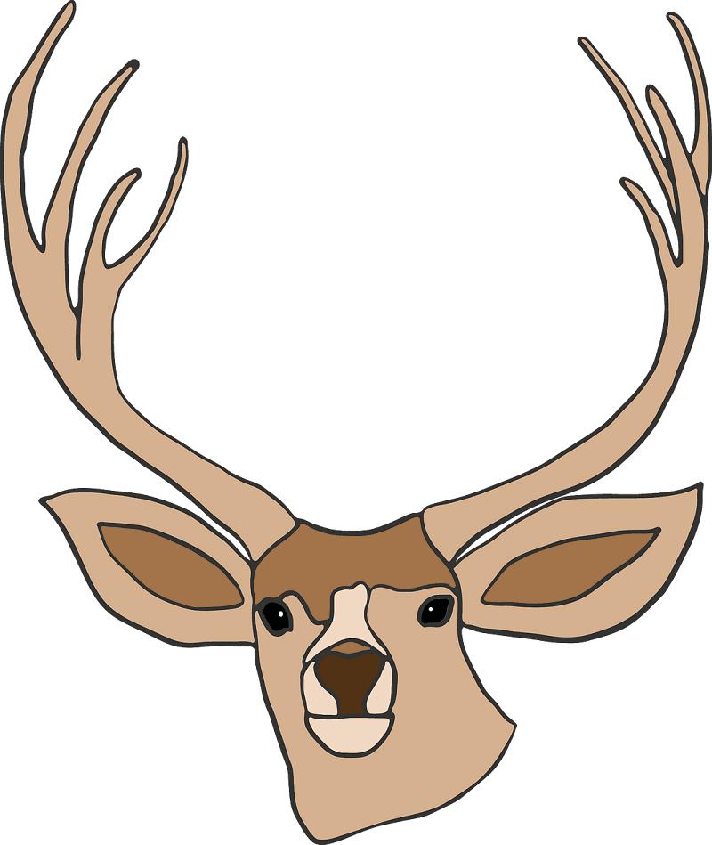 Deer Head clipart png image