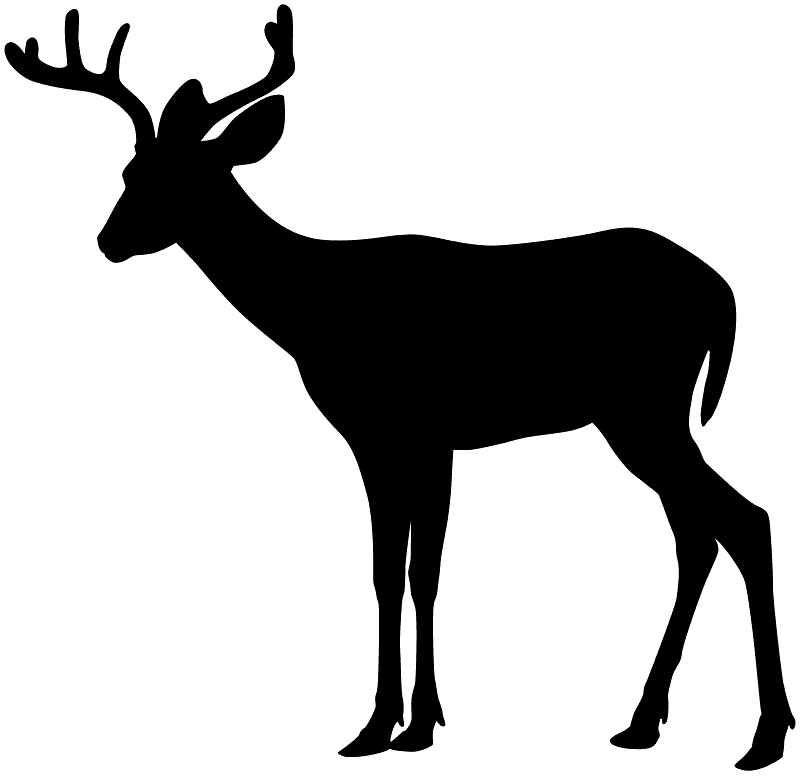 Deer Silhouette clipart image