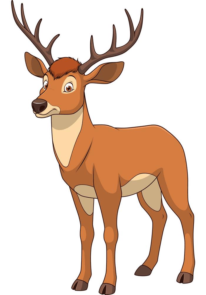Deer clipart png