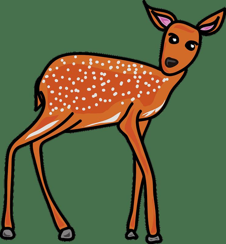 Deer clipart transparent background 2