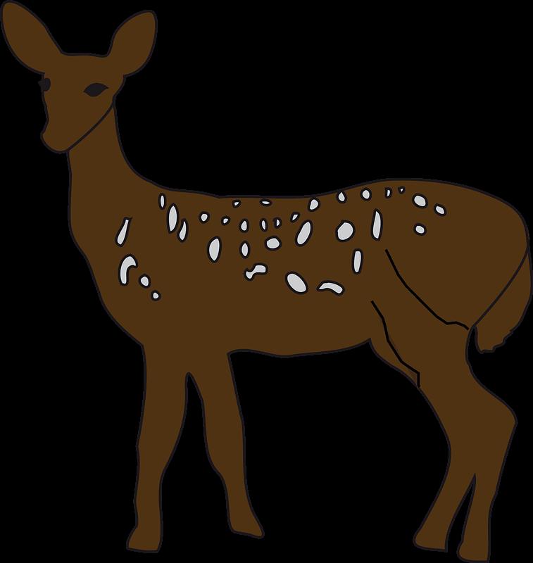 Deer clipart transparent png image