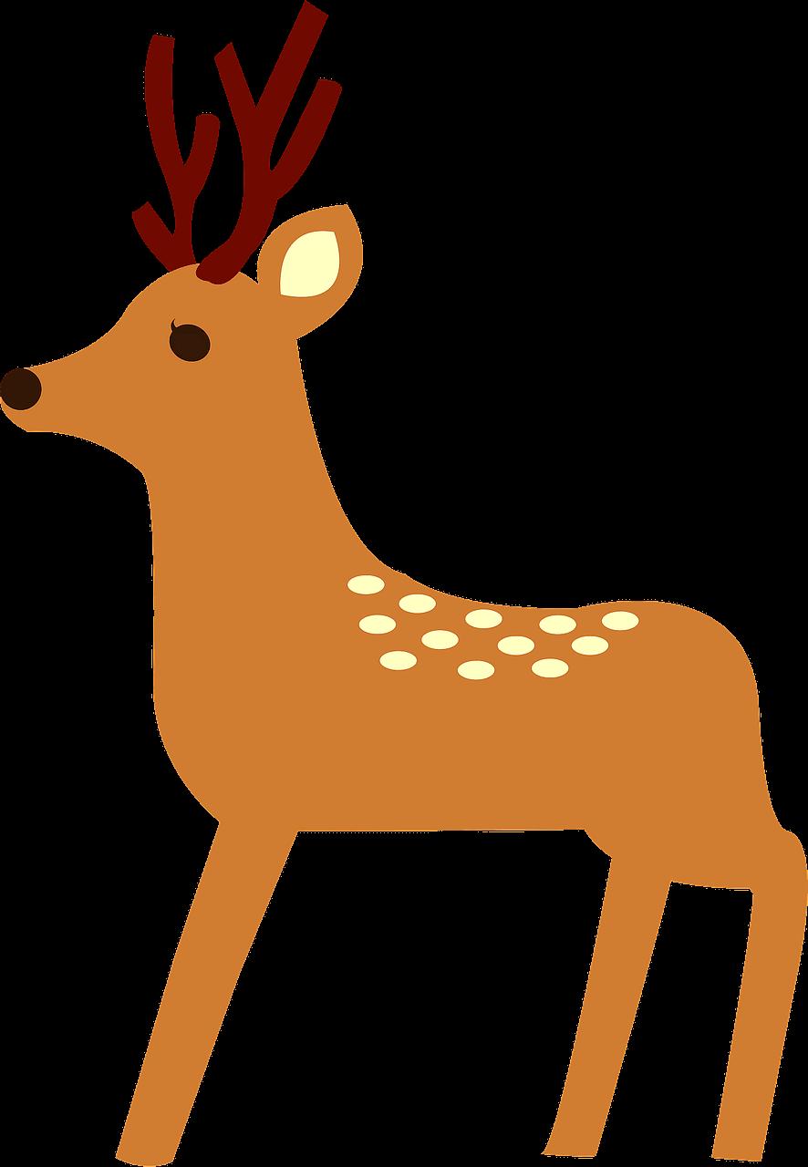 Deer clipart transparent png images
