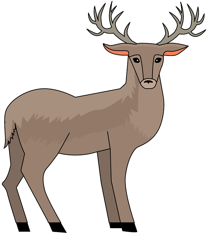 Deer clipart transparent