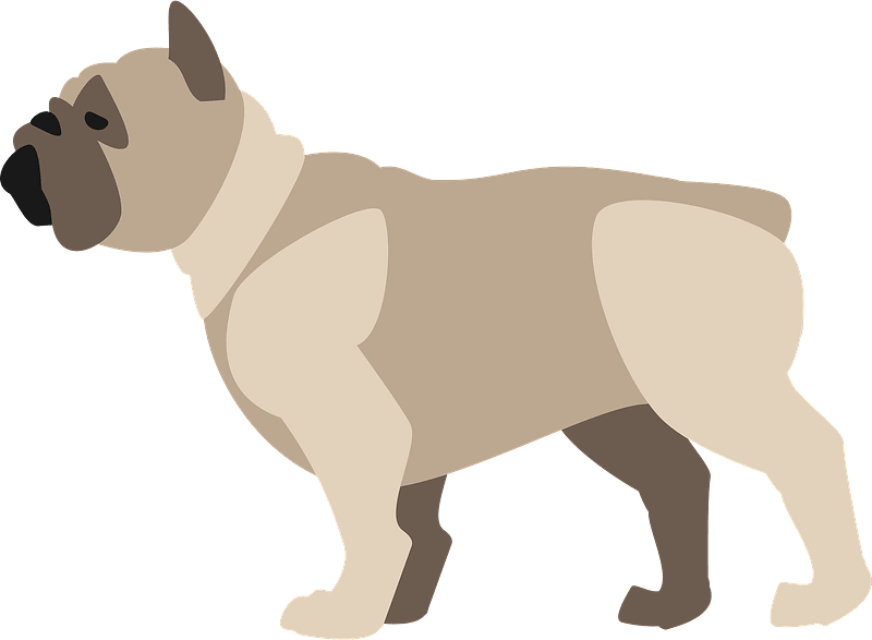 Download Bulldog clipart transparent for free