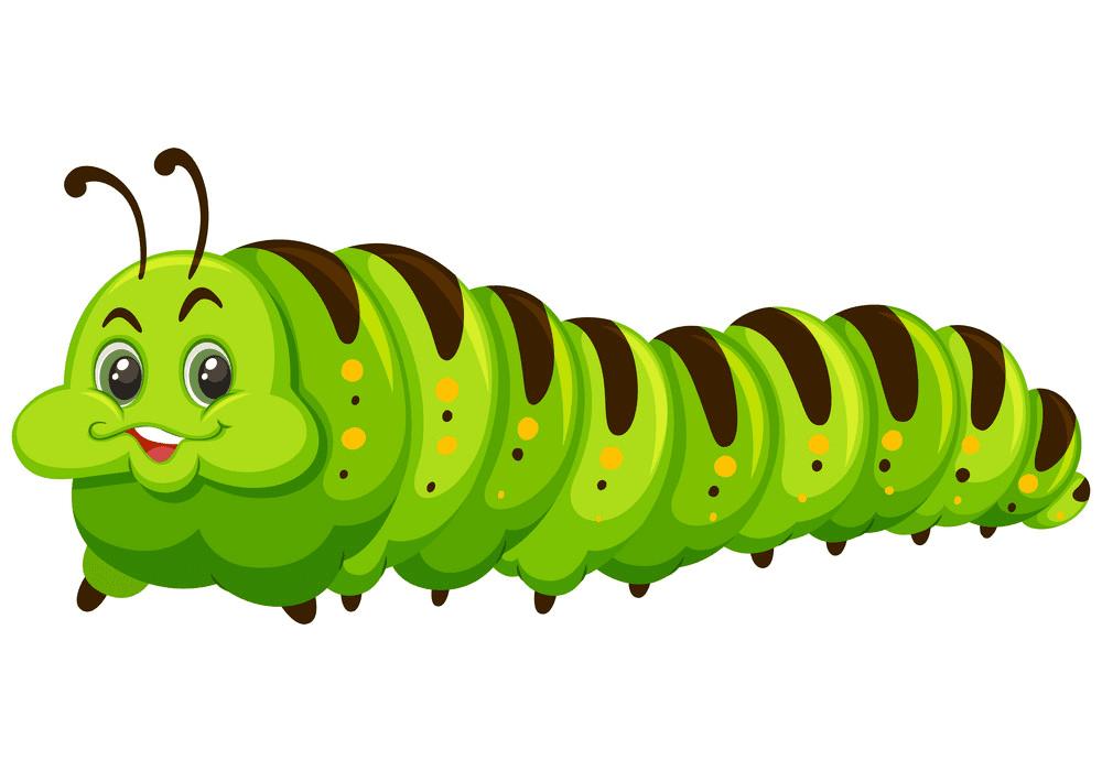 Download Cute Caterpillar clipart free